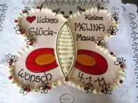 Torte Geburtstag Kinder Schmetterling